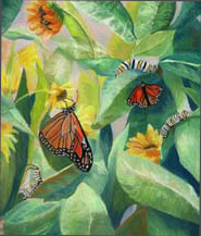 """Metamorphosis"", a pastel painting of Monarch butterflies by Amy Glover Martin"