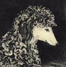 """Simone"", monotype of a standard poodle by Susan Cartwright"